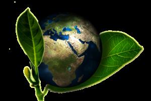 earth-661447_640-300x200 Activiteiten